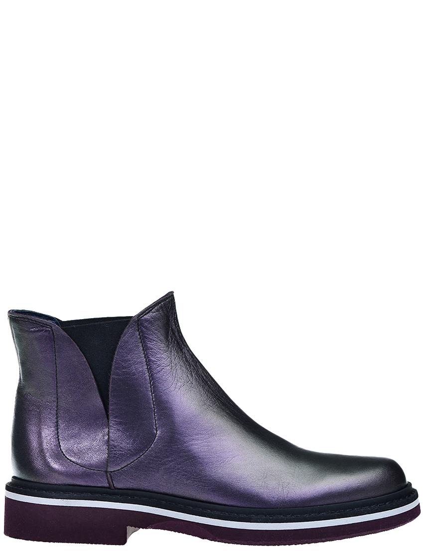 Купить Ботинки, POLLINI, Фиолетовый, Осень-Зима