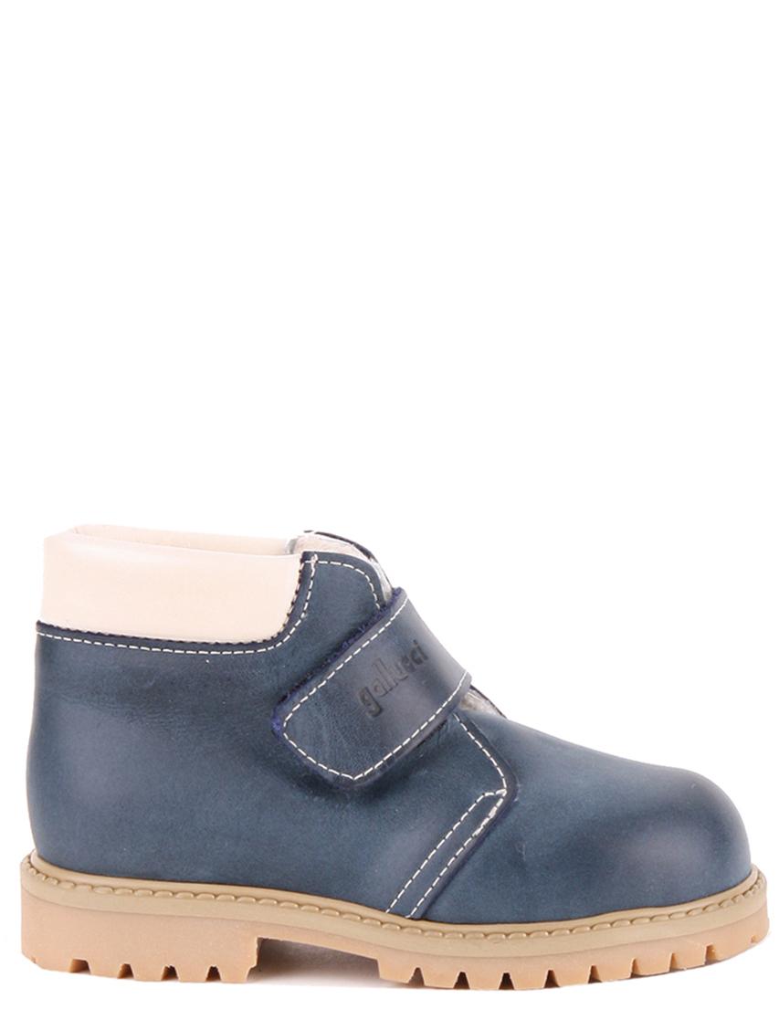 Купить Ботинки, Детские ботинки, GALLUCCI, Синий, Осень-Зима