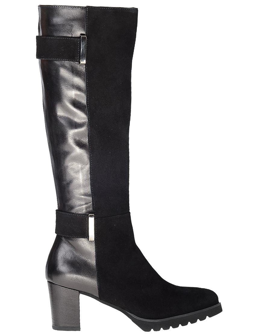 Купить Сапоги на каблуке, SCOLARO, Черный, Осень-Зима