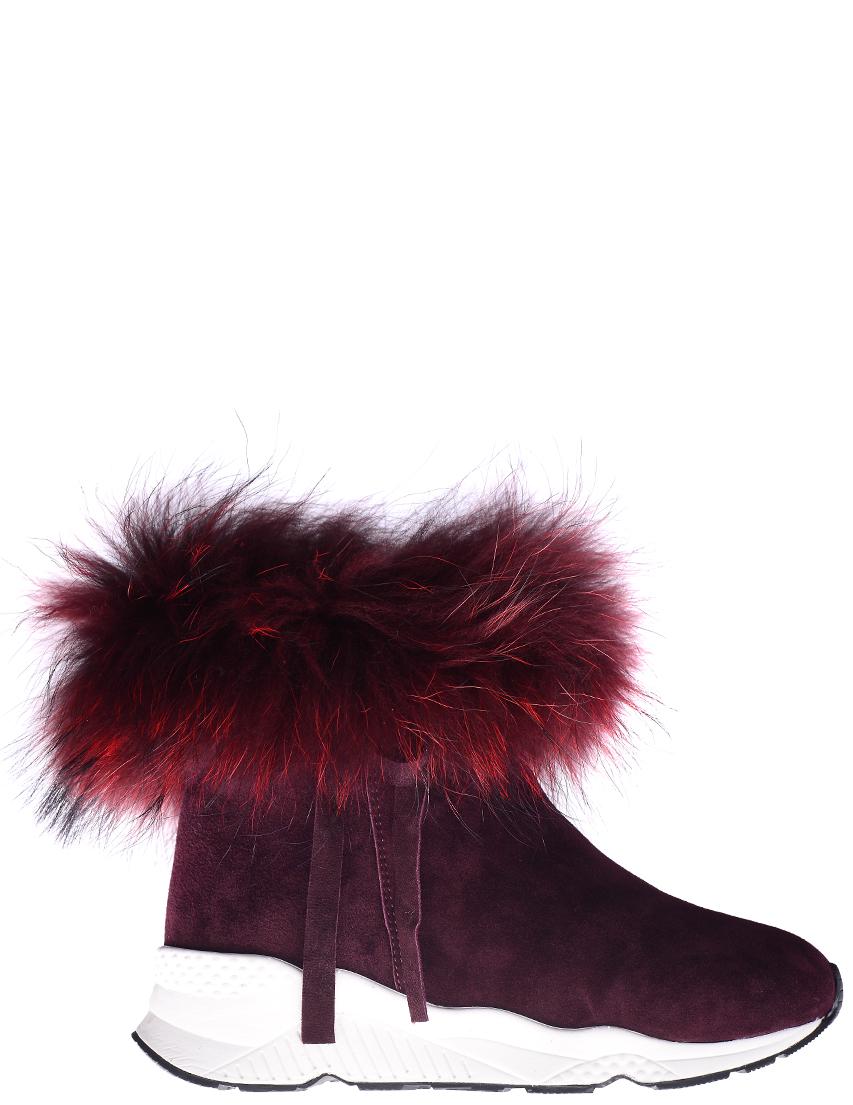 Женские ботинки Gianni Renzi 1009S_bordo
