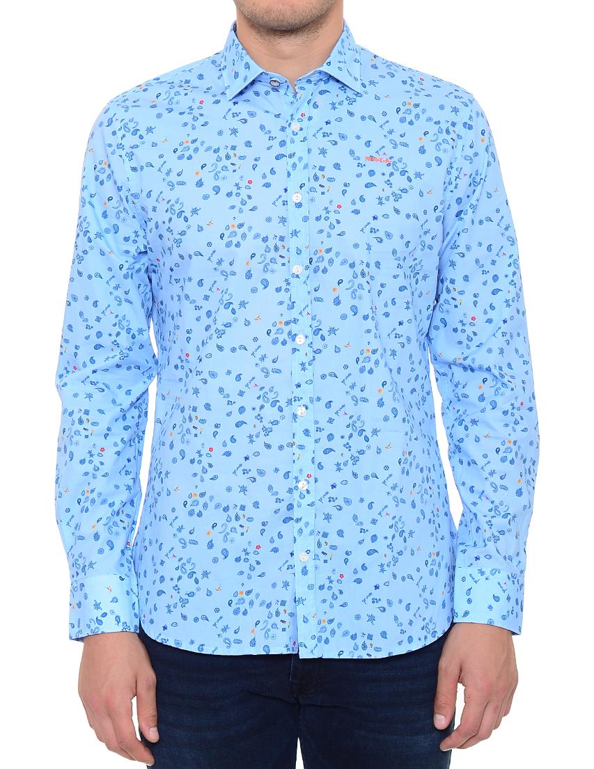 Купить Рубашка, NEW ZEALAND AUCKLAND, Голубой, 100%Хлопок, Весна-Лето