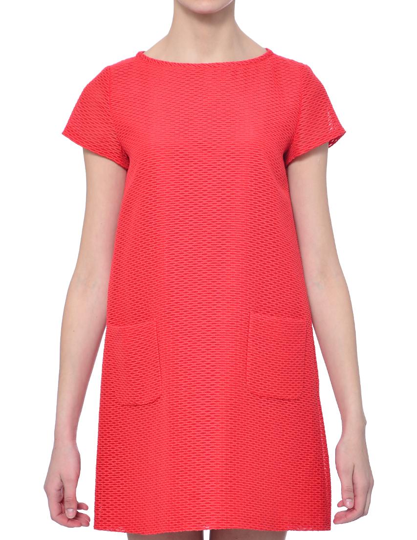 Купить Платье, IBLUES, Красный, 85%Хлопок 15%Полиамид, Весна-Лето