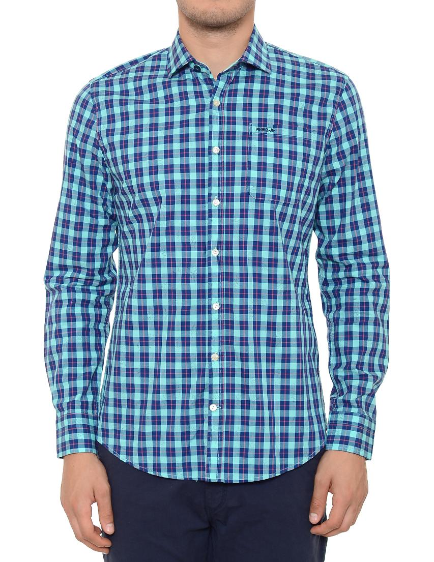 Купить Рубашка, NEW ZEALAND AUCKLAND, Бирюзовый, Синий, 100%Хлопок, Весна-Лето
