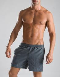 Мужские шорты пляжные GERONIMO P300_Grey