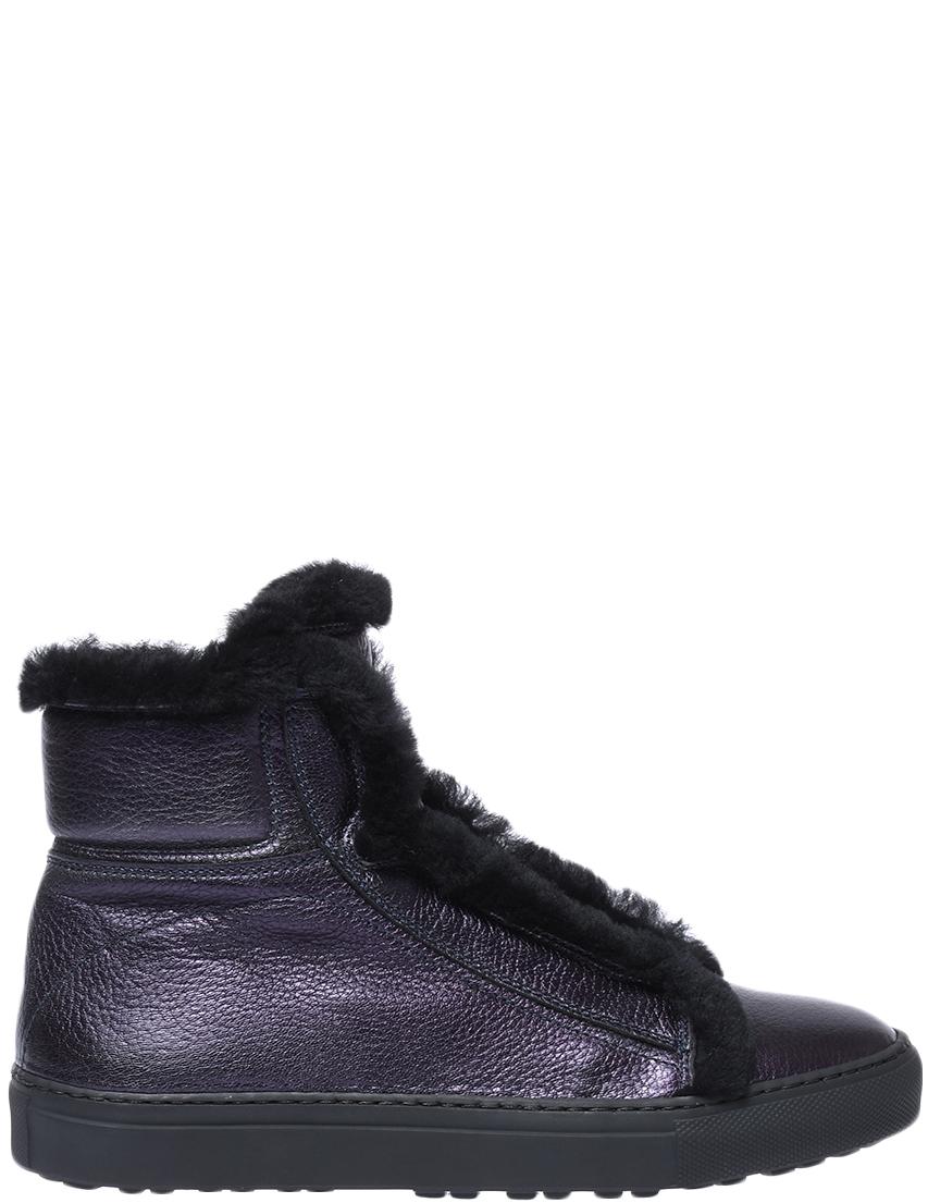 Ботинки, CAMERLENGO, Фиолетовый, Осень-Зима  - купить со скидкой