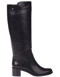 Женские сапоги SOFIA BALDI 707601_black