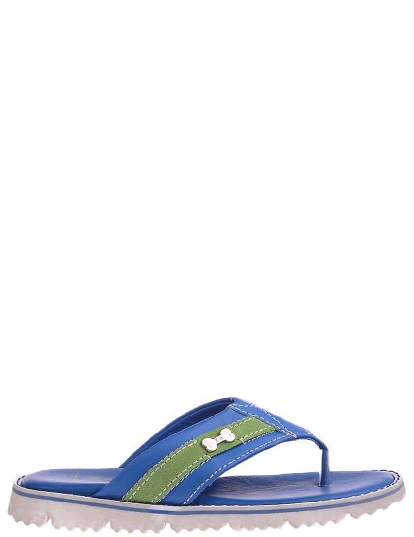 Детские шлепанцы для мальчиков FRANKIE MORELLO L5882cobalto_blue